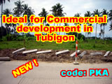 Commercial development - Tubigon - along Highway